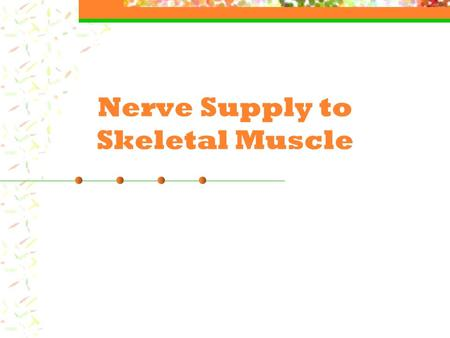 Nerve Supply to Skeletal Muscle. Nerve Supply The outside of the nerve plasma membranes contain a slightly positive charge (Na+). The inside of this same.