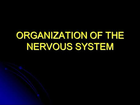 ORGANIZATION OF THE NERVOUS SYSTEM. FUNCTIONS SENSORY SENSORY MOTOR MOTOR COGNITIVE COGNITIVE.