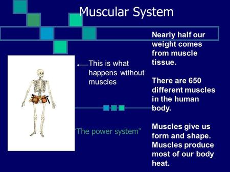 "Muscular System ""The power system"" This is what happens without muscles Nearly half our weight comes from muscle tissue. There are 650 different muscles."
