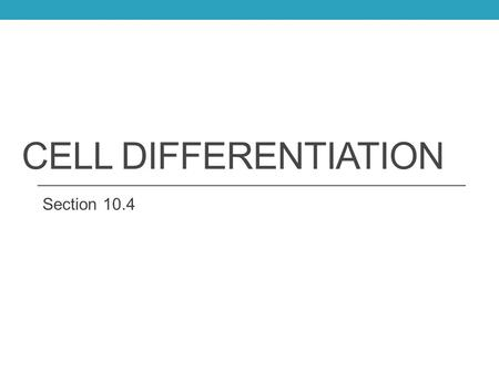 Cell Differentiation Section 10.4.