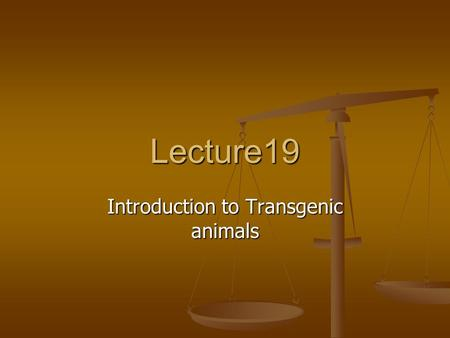 Lecture19 Introduction to Transgenic animals What are Transgenic Organisms? Transgenic organisms are organisms that are injected with foreign DNA from.