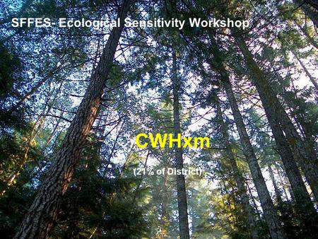 SFFES- Ecological Sensitivity Workshop CWHxm (21% of District)