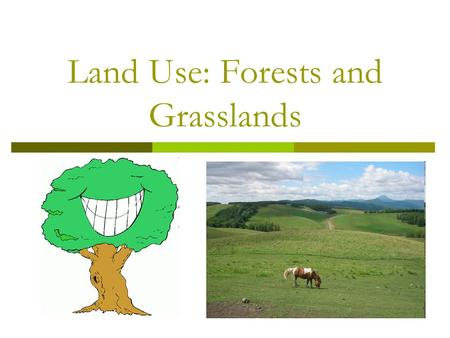 Land Use: Forests and Grasslands