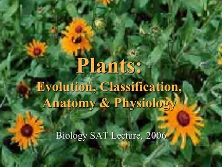 Plants: Evolution, Classification, Anatomy & Physiology Biology SAT Lecture, 2006.