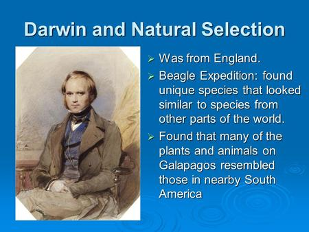 Darwin and Natural Selection  Was from England.  Beagle Expedition: found unique species that looked similar to species from other parts of the world.