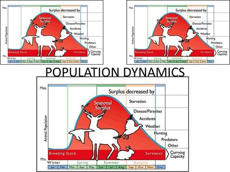 POPULATION DYNAMICS. POPULATION – POPULATION  DEF?? – POPULATION ECOLOGY CONCERNED WITH THE CHANGES IN POPULATION SIZE AND THE FACTORS THAT REGULATE.