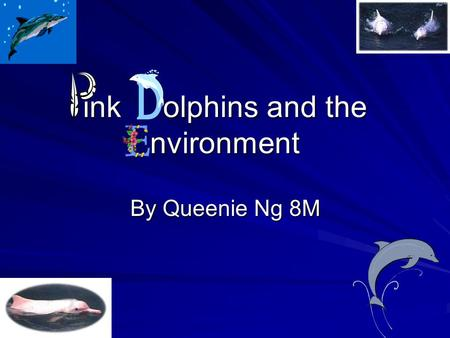Ink olphins and the nvironment By Queenie Ng 8M. Introduction Environmentalists began to call attention to the Chinese White Dolphins in Hong Kong in.