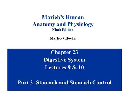 Chapter 23 Digestive System Lectures 9 & 10 Part 3: Stomach and Stomach Control Marieb's Human Anatomy and Physiology Ninth Edition Marieb  Hoehn.