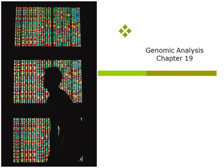 Genomic Analysis Chapter 19 Overview of topics to be discussed  How to sequence genomic DNA (we will have to touch briefly on polymerase chain reaction—a.