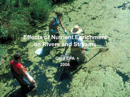 Effects of Nutrient Enrichment on Rivers and Streams Ohio EPA 2006.