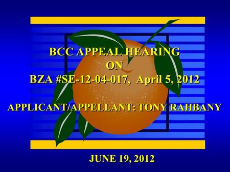 JUNE 19, 2012 BCC APPEAL HEARING ON BZA #SE-12-04-017, April 5, 2012 APPLICANT/APPELLANT: TONY RAHBANY.