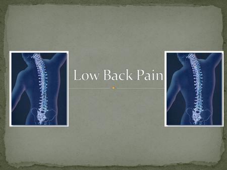 back pain differential diagnosis pdf