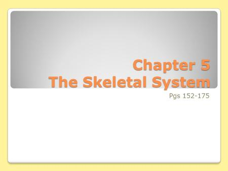 Chapter 5 The Skeletal System Pgs 152-175. Vertebral Column Intervertebral discs – flexible fibrocartilage pads, act as cushion and shock absorption In.