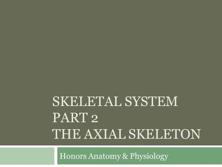 SKELETAL SYSTEM PART 2 THE AXIAL SKELETON Honors Anatomy & Physiology.