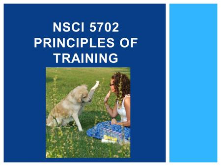NSCI 5702 PRINCIPLES OF TRAINING. 1.What is training? 2.Why is it useful to train animals? 3.How do animals learn? 4.Training techniques used with animals.