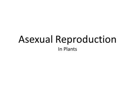 Asexual Reproduction In Plants. One of the most interesting and important areas of horticulture is_________________________. All organisms, including.