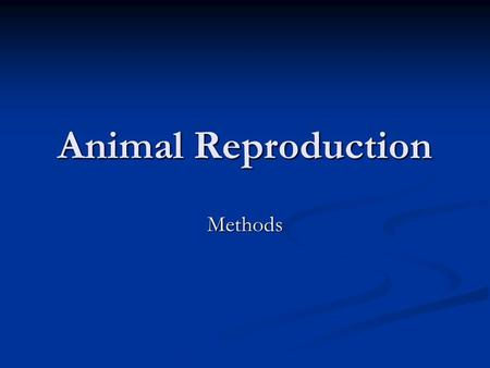 Animal Reproduction Methods. Methods 1. Live Cover 1. Live Cover 2. Artificial Insemination 2. Artificial Insemination 3. Embryo transplant 3. Embryo.