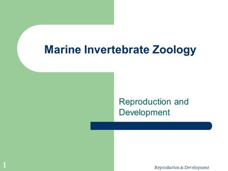 Reproduction & Development 1 Marine Invertebrate Zoology Reproduction and Development.