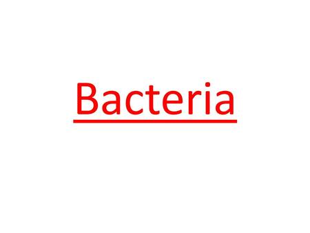Bacteria. Characteristics prokaryotic unicellular usually have locomotion reproduce sexually & asexually.