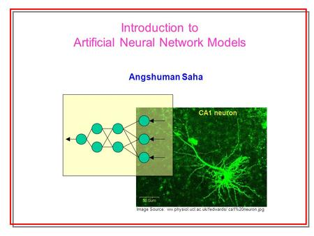 Introduction to Artificial Neural Network Models Angshuman Saha Image Source: ww.physiol.ucl.ac.uk/fedwards/ ca1%20neuron.jpg.