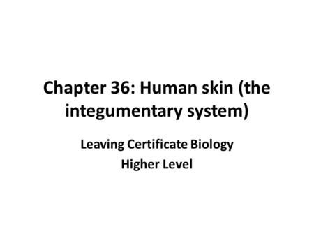 Chapter 36: Human skin (the integumentary system)
