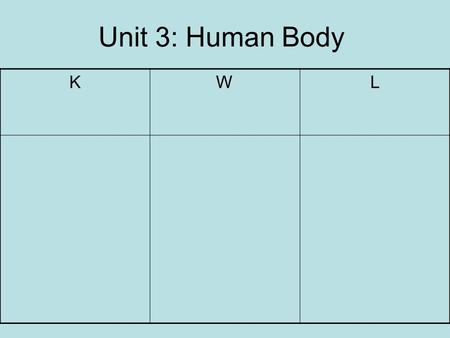 Unit 3: Human Body KWL. Body OrganizationCell  Tissue  Organ  Organ System Homeostasis: all things in the body are in balance.