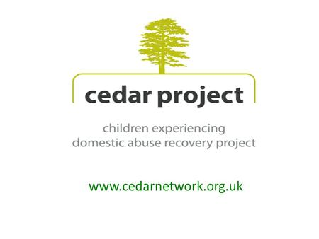 Www.cedarnetwork.org.uk. What caught our attention? Supporting mother to support child Gendered analysis i.e. DA being a cause & effect of inequality.