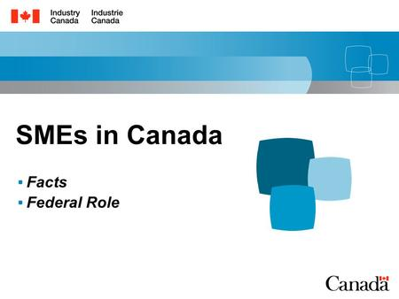 SMEs in Canada Facts Federal Role. 1 Outline Overview of SMEs in Canada Roles of Government.