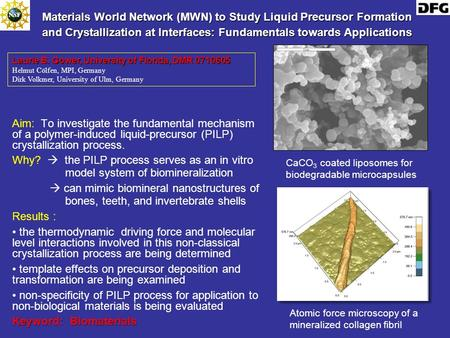 Materials World Network (MWN) to Study Liquid Precursor Formation and Crystallization at Interfaces: Fundamentals towards Applications Aim: To investigate.