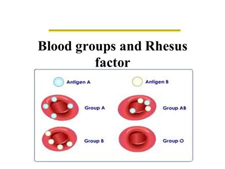 Blood groups and Rhesus factor