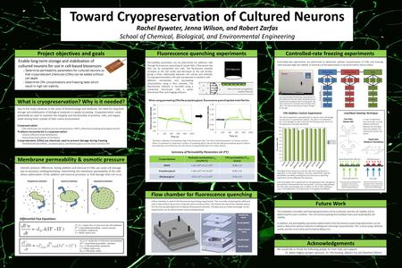 Toward Cryopreservation of Cultured Neurons Rachel Bywater, Jenna Wilson, and Robert Zarfas School of Chemical, Biological, and Environmental Engineering.