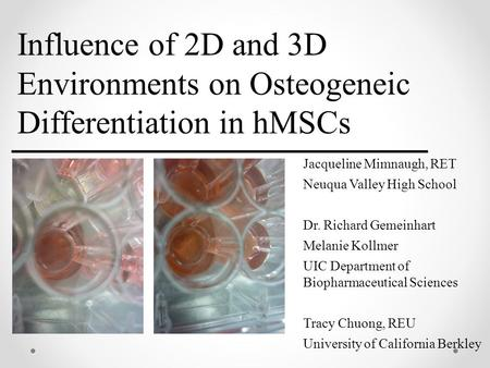 Influence of 2D and 3D Environments on Osteogeneic Differentiation in hMSCs Jacqueline Mimnaugh, RET Neuqua Valley High School Dr. Richard Gemeinhart Melanie.