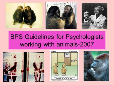 BPS Guidelines for Psychologists working with animals-2007.