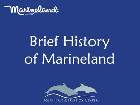 Brief History of Marineland. See notes below Why Train?