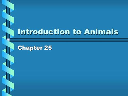 Introduction to Animals Chapter 25. Animal Overview Animal kingdom is extremely diverse ALL Animals are: - Multicellular –E–E–E–Eukaryotes –N–N–N–No cell.
