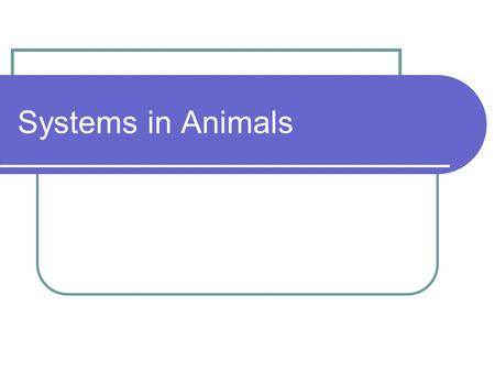 Systems in Animals. Main Idea Different body systems help animals carry out basic life functions. Skeletal system Muscular system Nervous system Respiratory.