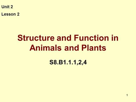 11 Structure and Function in Animals and Plants S8.B1.1.1,2,4 Unit 2 Lesson 2.