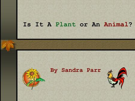 Is It A Plant or An Animal? By Sandra Parr FAIR USE GUIDELINES: Certain materials are included under the fair use exemption of the U.S. Copyright Law.