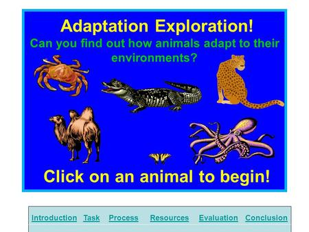 Adaptation Exploration! Can you find out how animals adapt to their environments? Click on an animal to begin! IntroductionTaskProcessResourcesEvaluationConclusion.