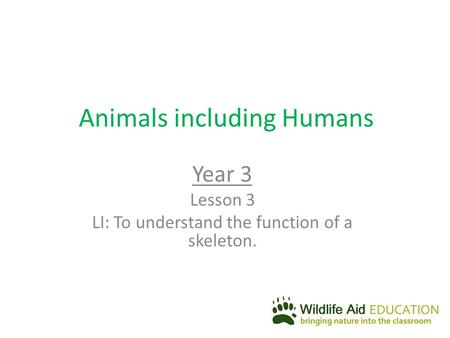 Animals including Humans Year 3 Lesson 3 LI: To understand the function of a skeleton.