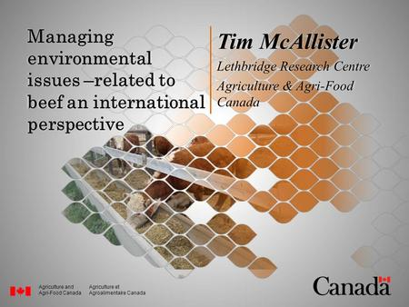 Agriculture and Agri-Food Canada Agriculture et Agroalimentaire Canada Managing environmental issues –related to beef an international perspective Tim.