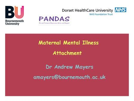 Maternal Mental Illness Attachment Dr Andrew Mayers