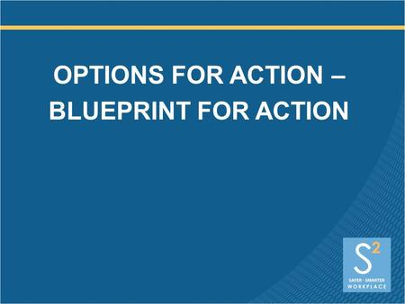 OPTIONS FOR ACTION – BLUEPRINT FOR ACTION. Executive (CEO) Engagement MAKING THE BUSINESS CASE Legal mandates Liability Employee engagement Corporate.
