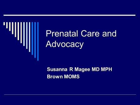 Prenatal Care and Advocacy Susanna R Magee MD MPH Brown MOMS.