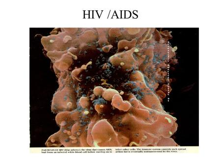 HIV /AIDS. GENITAL HERPES Genital herpes infect at least 45 million people ages 12 and older. Genital Herpes infects more women than men. Most genital.