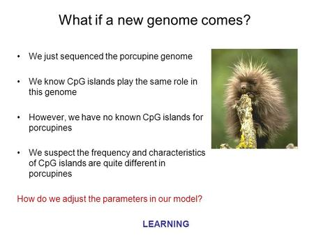 What if a new genome comes? We just sequenced the porcupine genome We know CpG islands play the same role in this genome However, we have no known CpG.