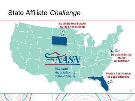 State Affiliate Challenge 1 South Dakota School Nurses Association Florida Association of School Nurses Delaware School Nurse Association.