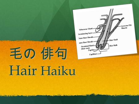 毛の 俳句 Hair Haiku. What is a Haiku? The essence of haiku is cutting ( kiru ). This is often represented by the juxtaposition of two images or ideas and.