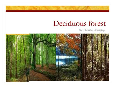"Deciduous forest By: Sheikha Al-Attiya. Definition of Deciduous The word Deciduous means falling off or out at a certain season"". Deciduous forest."