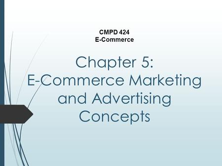 Chapter 5: E-Commerce Marketing and Advertising Concepts